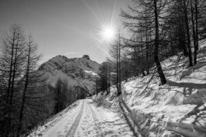 Enjoy A Winter Hiking Trip In Colorado