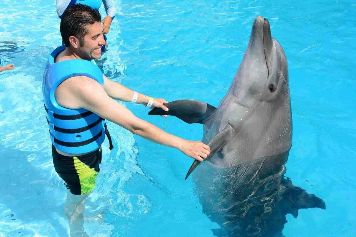 Man with dolphin, Interactive Aquarium, Cancun