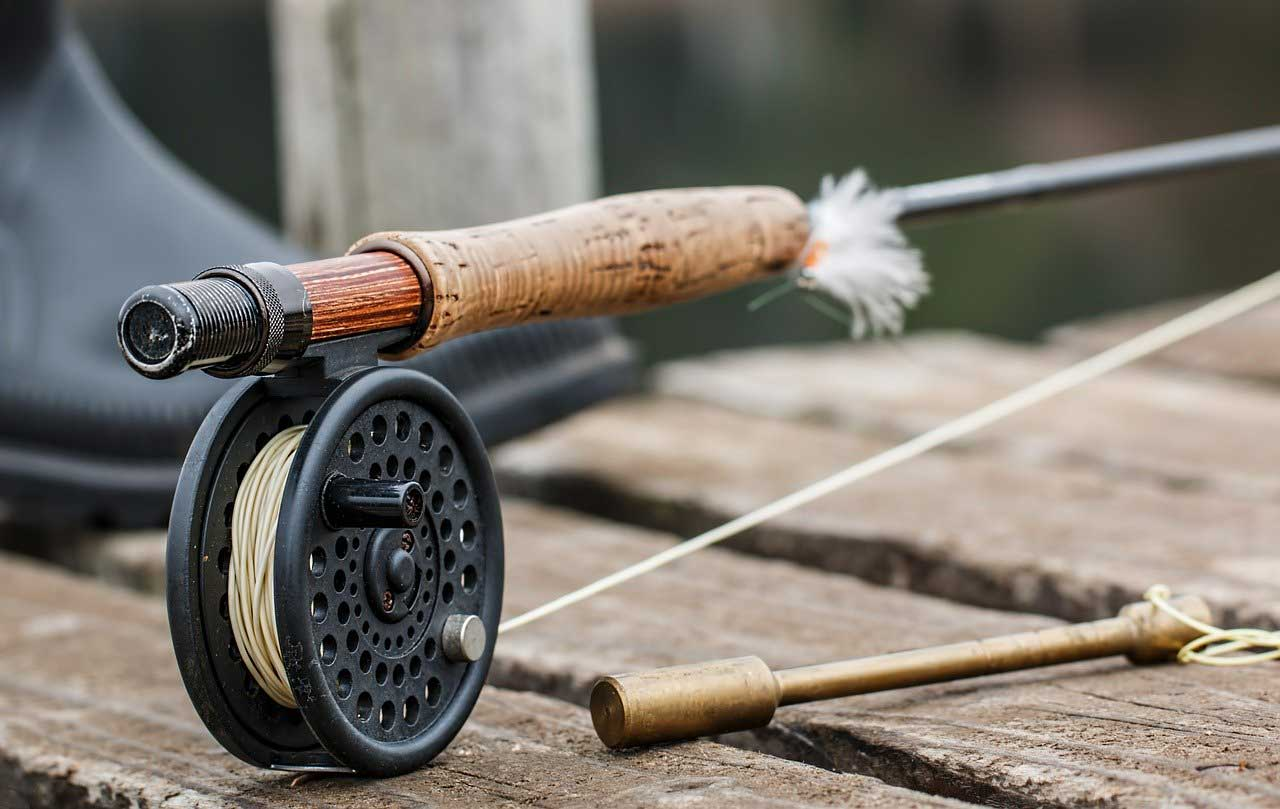 The Best Destinations for Trout Fishing