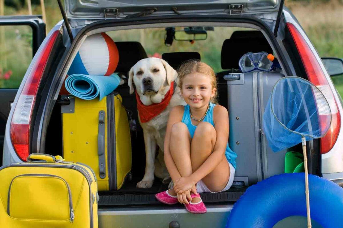 Packing your car before hitting the road