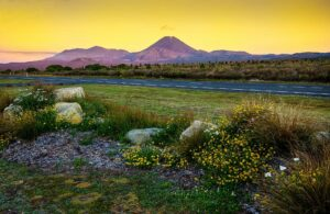 4 Beautiful Places for a Cycling Trip in New Zealand