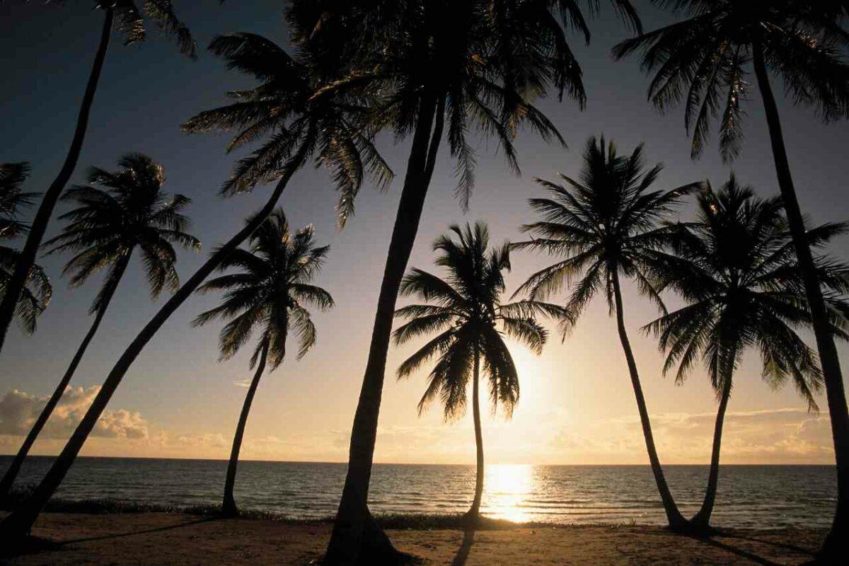 Andros, The Bahamas