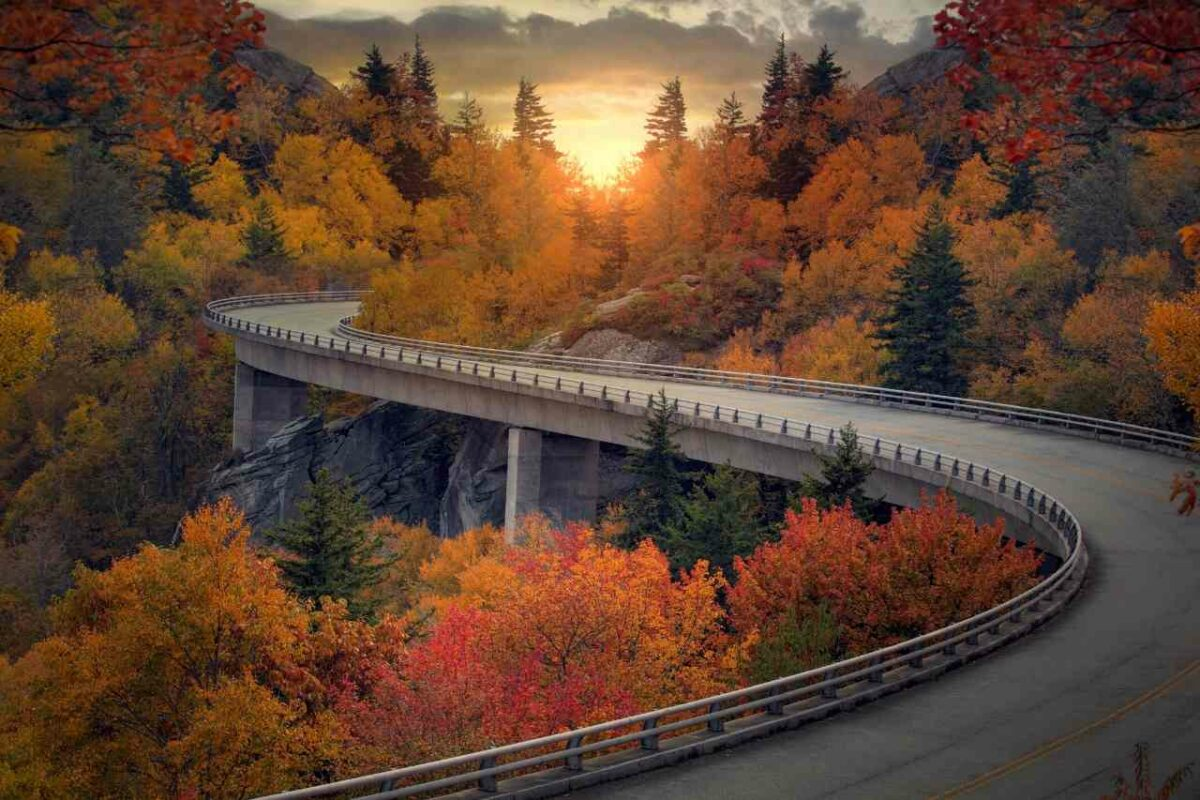 How to Enjoy the Perfect Fall Drive