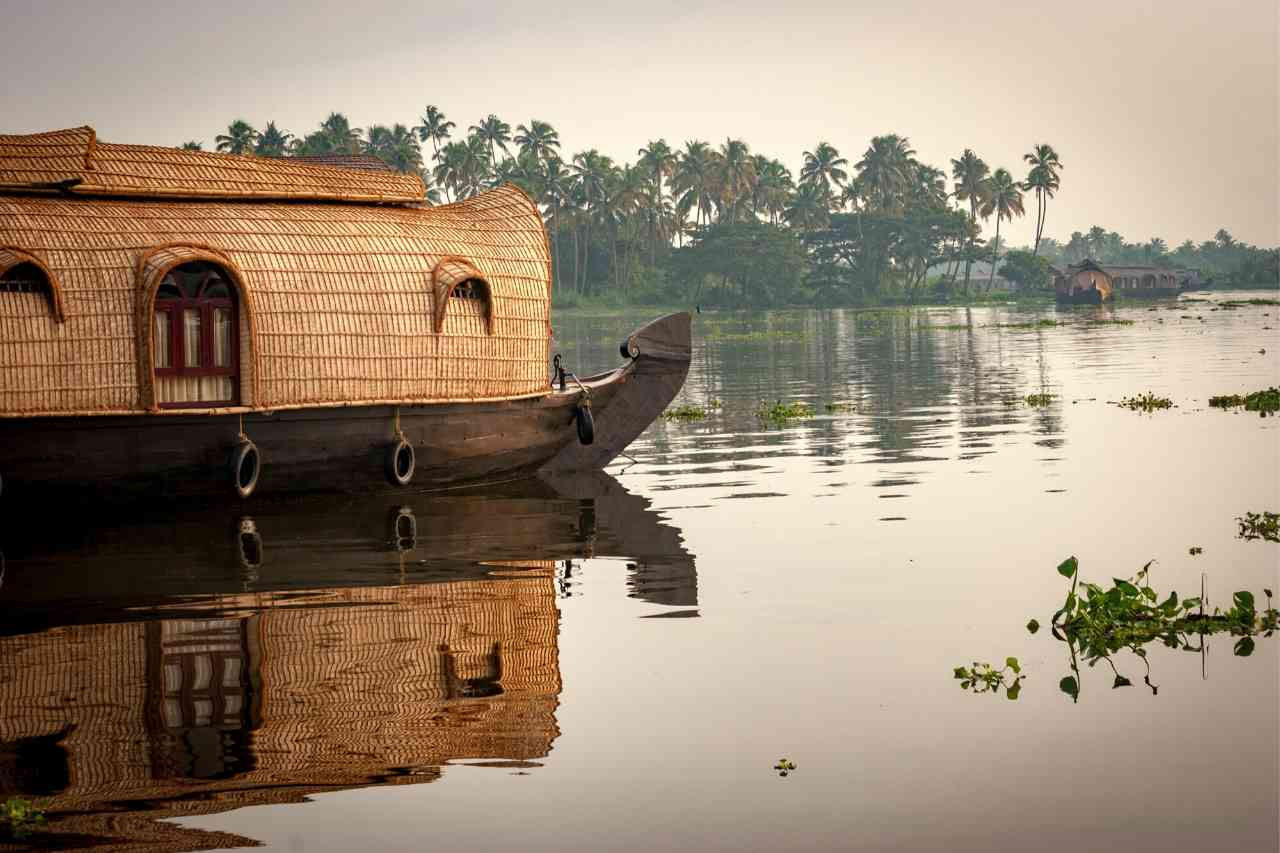 Top 5 Things to Do in Kerala, India
