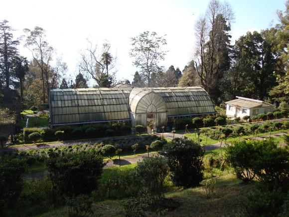 Lloyd Botanical Garden, Darjeeling