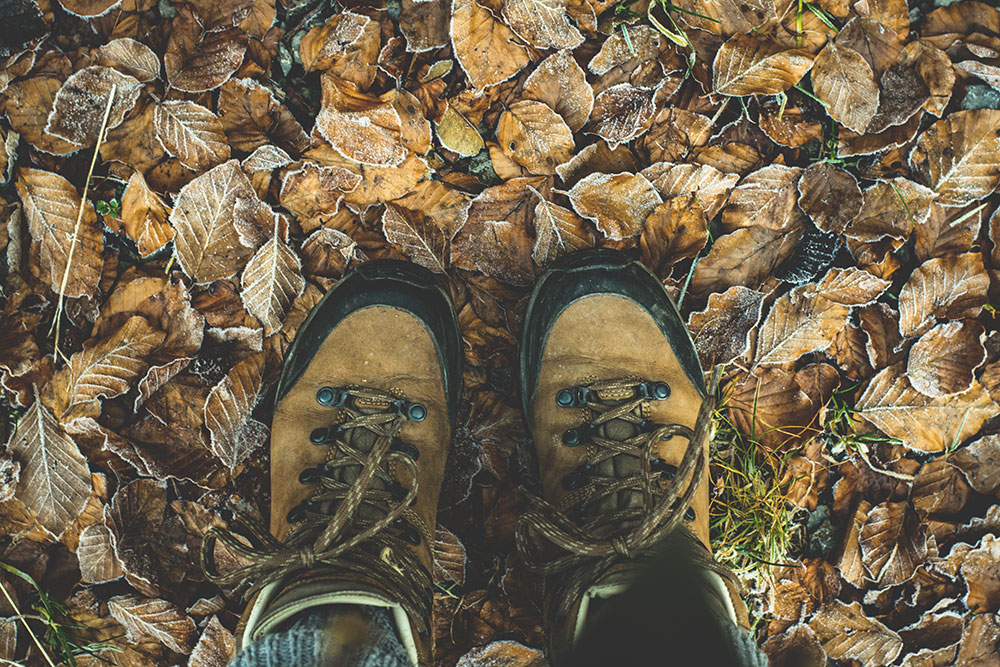 hiking boots in leaves