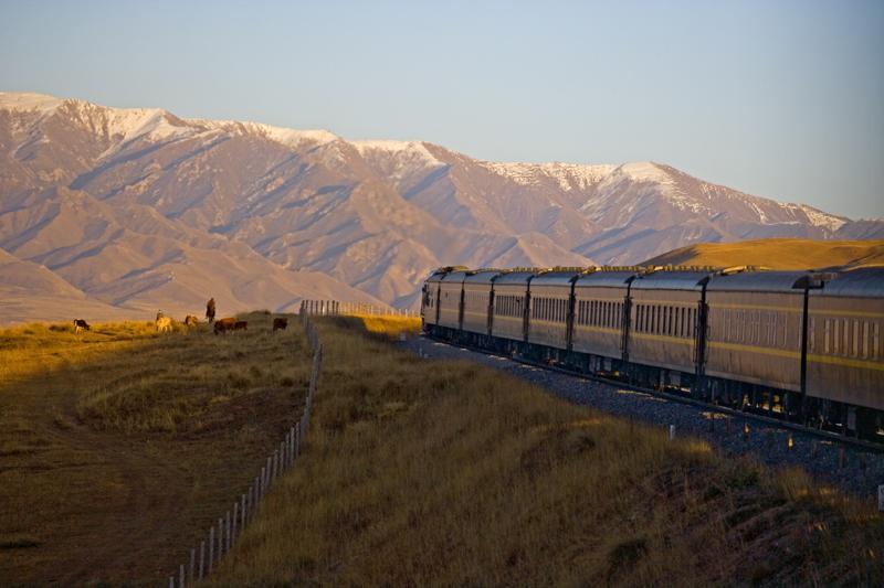 Golden Eagle Train - Silk Road