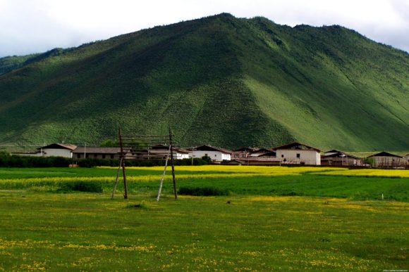 Residential area near the grassland adventure park