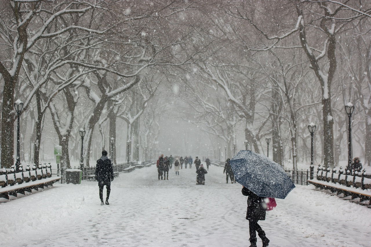 Snow in Central Park in New York City